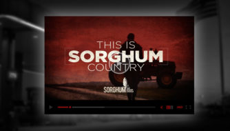 This is Sorghum Country